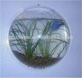 Aat 323 mural poissons acrylique aquarium ponte fish for Prix aquarium rond
