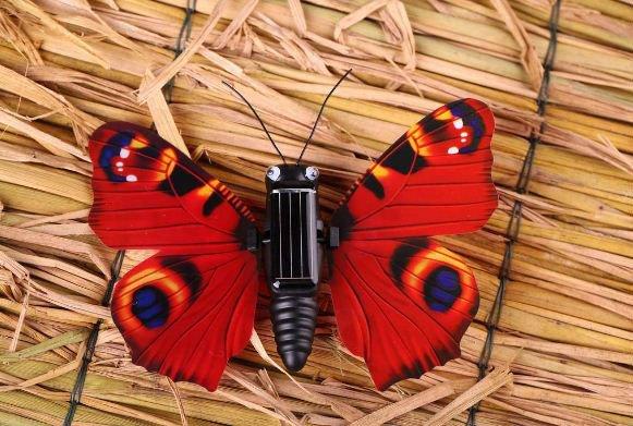 el movimiento de la energía solar la energía de la mariposa de ...