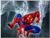 Top handcrafts art Oil Painting on canvas SPIDERMAN Guaranteed 100% Free shipping