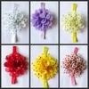 2014 New design baby headbands flower kids hairbands cute headdress 6 colors hiarband-36-1