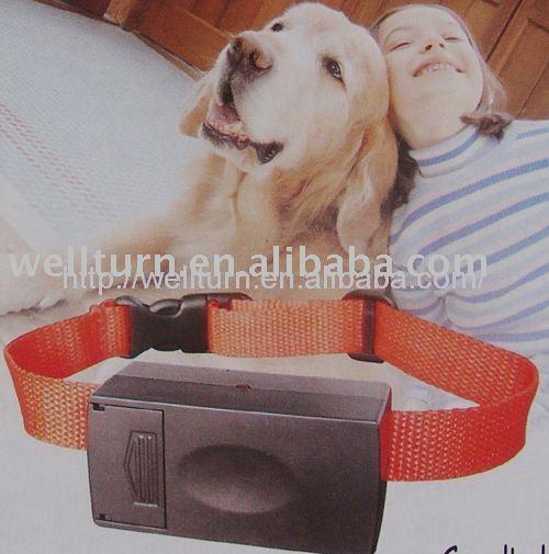 Dog Training Niceville Fl