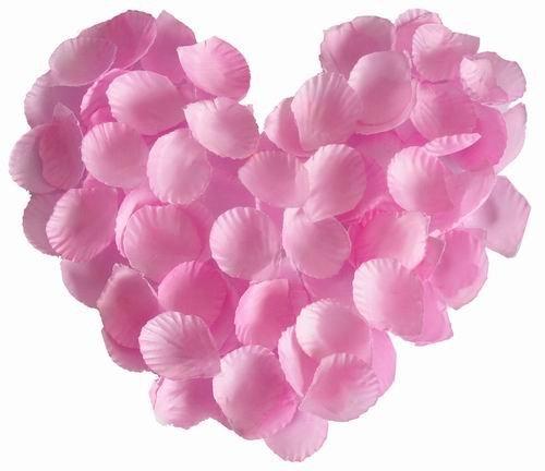 hot pink rose petals. Pink Silk Rose Petals