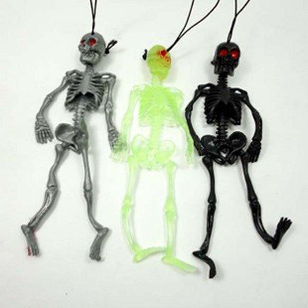 human skeleton skull. human skeleton / skull