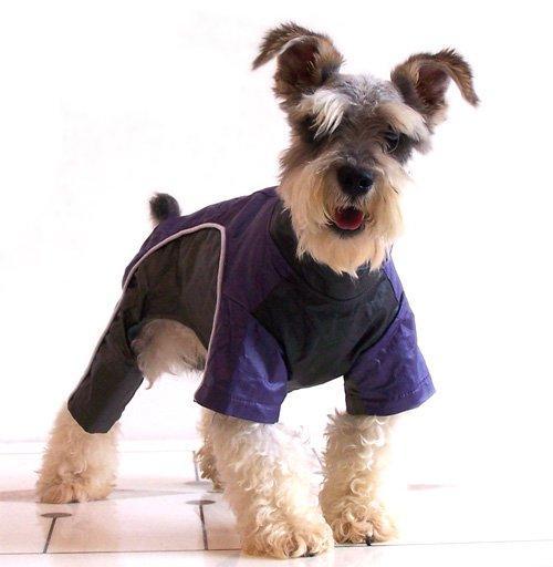 Good Winter Dog Coat