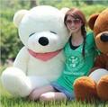 Free shipping,3 colours for choose (200cm) Sleeping Teddy Bear ,plush teddy toy/anime/soft toys