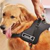 Wellsore traction rope husky samoyed pet chest dog suspenders luxury large dog collar