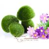 Free shipping,small cute mushroom design decorations,artificial animal grass land,nice gift 2pcs/lot