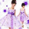 Retail 2014 summer girls dress princess baby clothes kids dress children dress size for 3-7 years AQZ016
