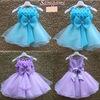 retail,real picture,1pcs/1lot Frozen clothes elsa princess dress Elsa & Anna dresses Costume kids girls Blue Dress party dreeese