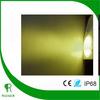 Warm White led Par56 bulb lamp light 351pcs led free shipping CE RoHs IP68