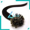 "free shipping 16""-26""Pre-Bonded hair U Tip Keratin Glue Nail Tip Hair Extension Silky Straight hair products #02,100s"